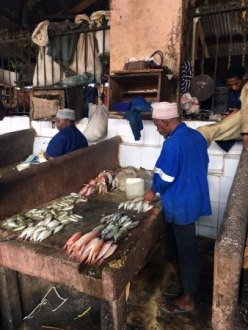 stone-town-fish-market[1]